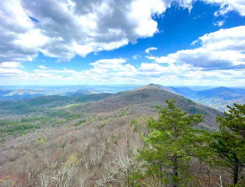 Sitting Bear Mountain