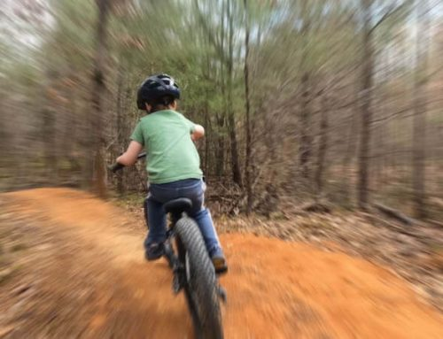 Yelling and Dam Builder Trails