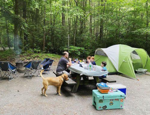 Backbone Rock Campground